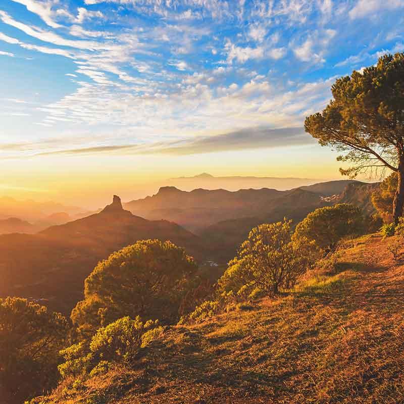 Gran Canaria Islas Canarias