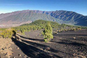 Vista desde el Llano de Jable a la Caldera de Taburiente y el Pico Bejenado