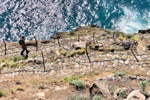 bajada a la costa del noroeste de Tijarafe