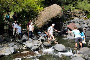La Palma Barranco de Las Angustias en la Caldera de Taburiente